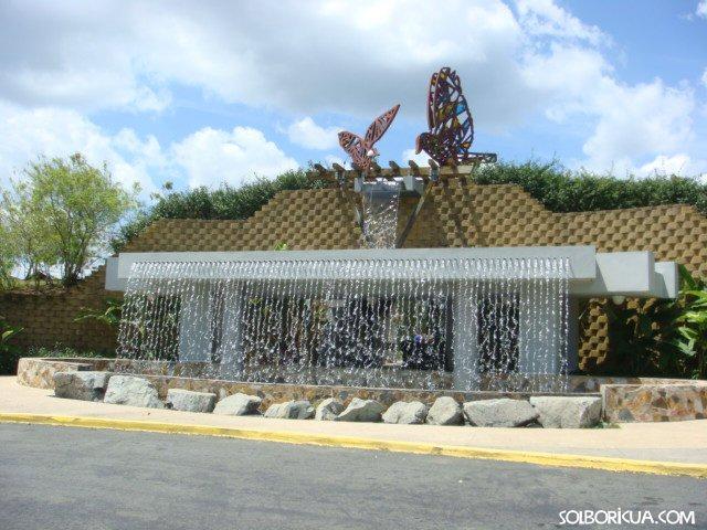 Jardin botanico y cultural de caguas de puerto rico for Bodas jardin botanico caguas